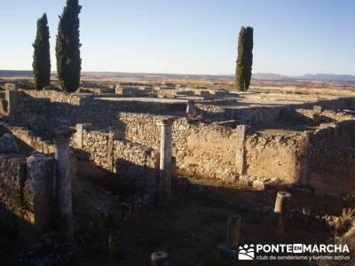 Casa Yacimiento arqueológico Clunia Sulpicia; las excursiones; excursiones turismo